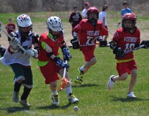 Burlington lacrosse 075cc